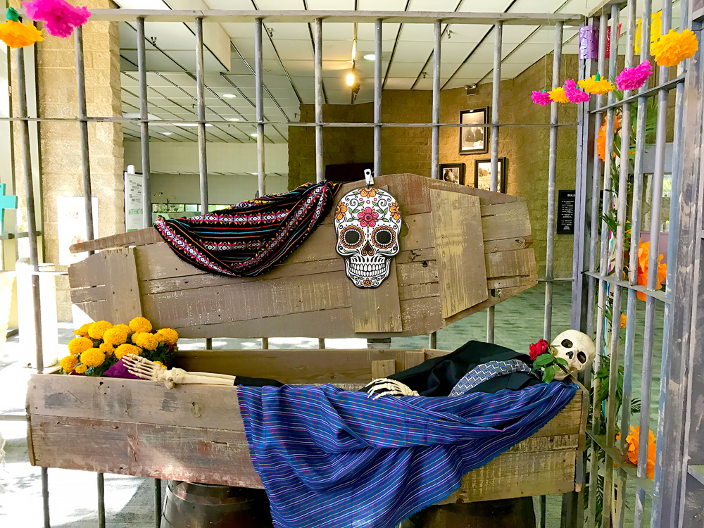 A skeleton is in a coffin at the Dia de los Muertos event at Continuing Education