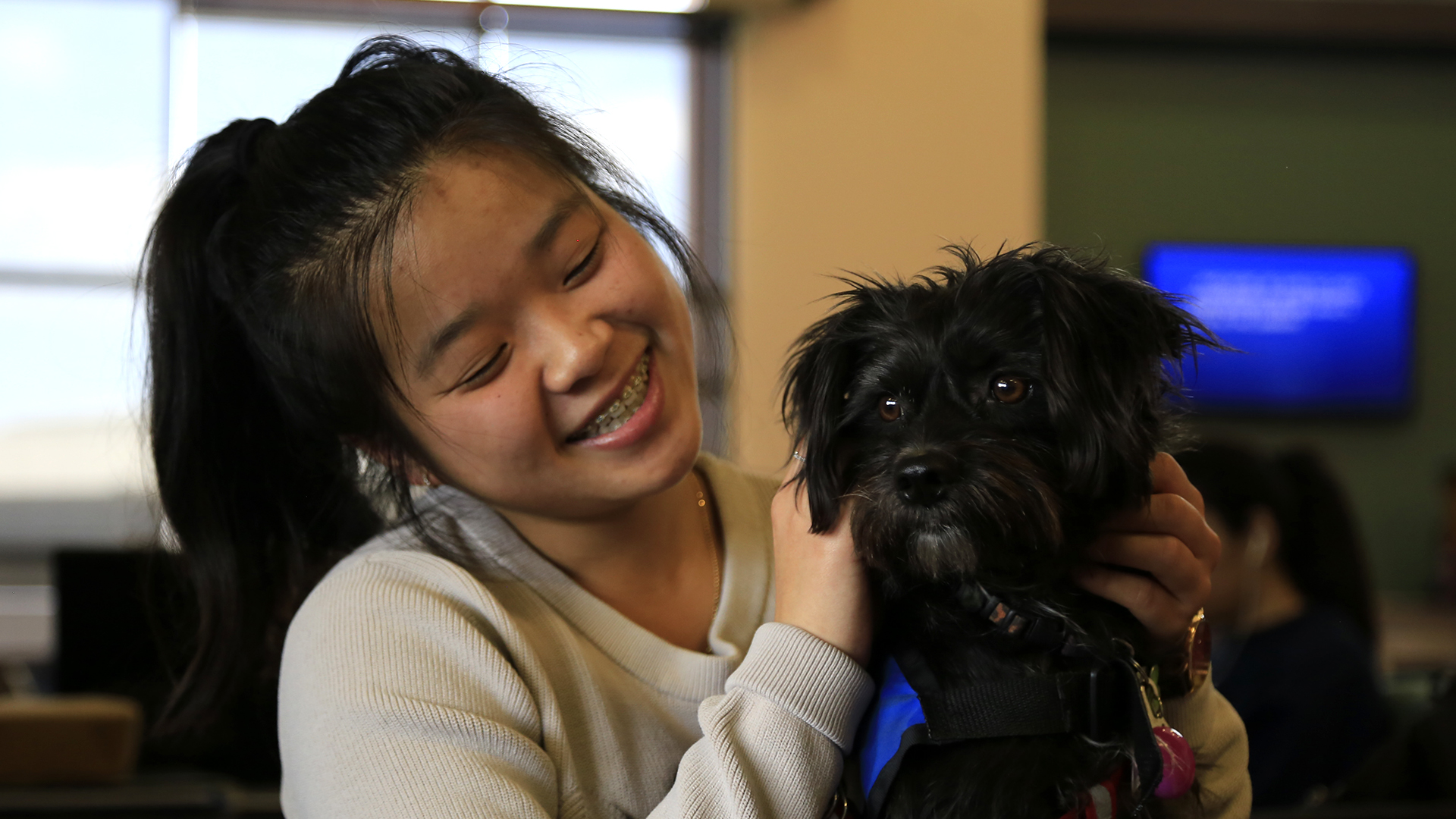 Love on a Leash offers stress relief during finals