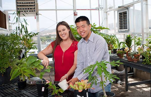 Two students work in a greenhouse